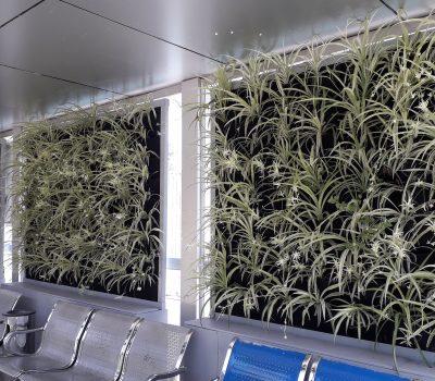 دیوار سبز آپارتمانی شرکت گل آويز سبز شهری