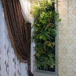 دیوار سبز گل آویز 1 10