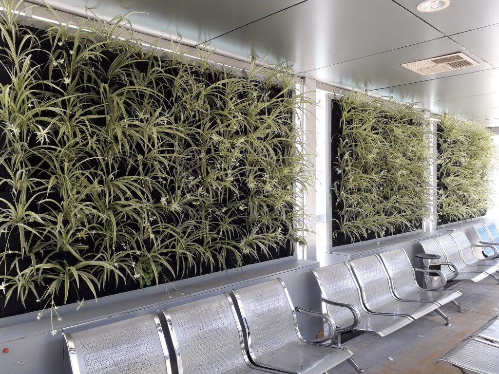 دیوار سبز گل آویز 20200526 133243