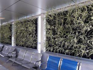 دیوار سبز گل آویز 20200526 133321