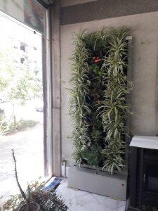 دیوار سبز گل آویز 20200610 105341