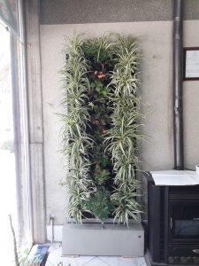 دیوار سبز گل آویز 20200610 105353