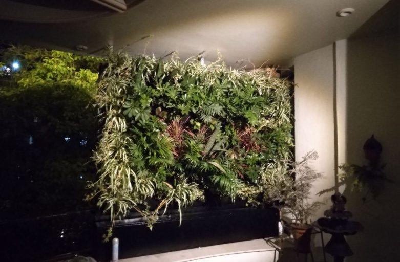 دیوار سبز آپارتمانی شرکت گل آويز IMG 20200725 230209 388