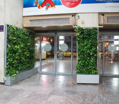 دیوار سبز آپارتمانی شرکت گل آويز IMG 5297
