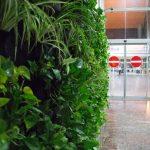 دیوار سبز گل آویز IMG 5301