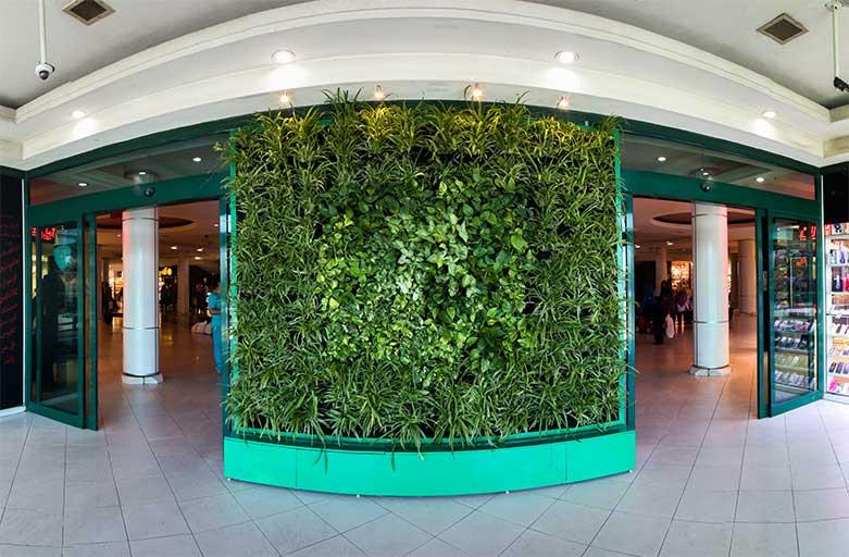 دیوار سبز گل آویز almas shargh