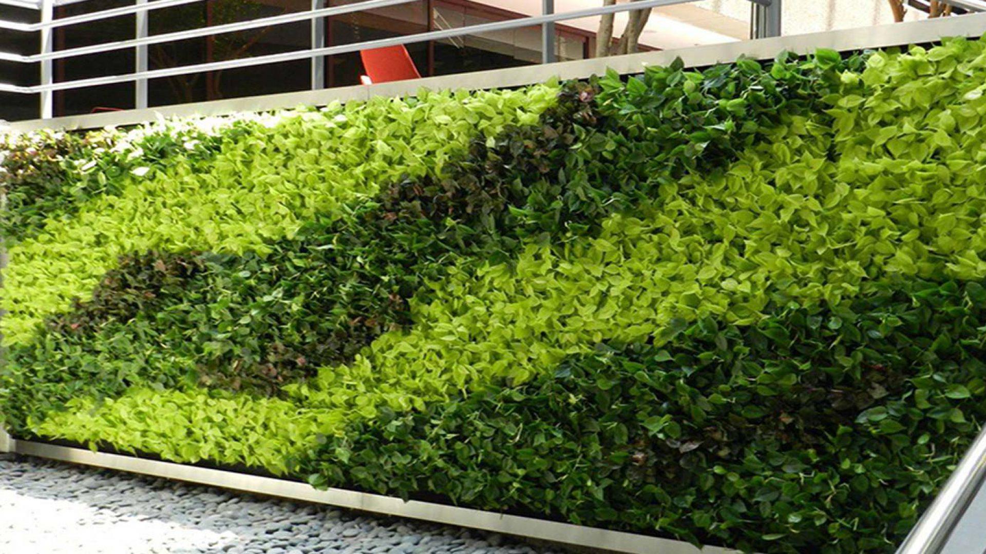 دیوار سبز گل آویز