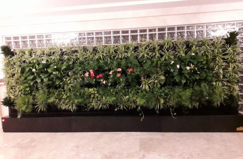 دیوار سبز آپارتمانی شرکت گل آويز photo 2020 04 17 14 20 49