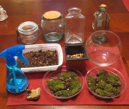 روش ساخت و ایجاد تراریوم در منزل - گل آويزظرف: