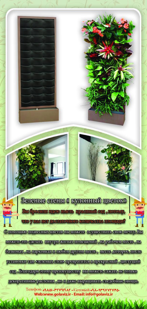 دیوار سبز آپارتمانی شرکت گل آويز wall garden1